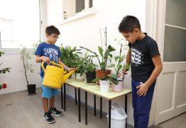 botanik-odasi